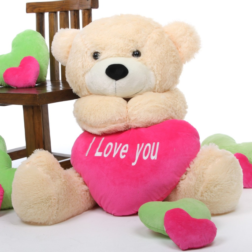Valentine Teddy gift Idea